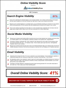 Online Visibility Grader for Small Businesses